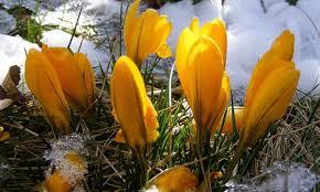 Атмосферното налягане ще бъде по-ниско от средното за март. През