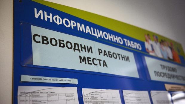 Агенцията по заетостта стартира процедура за прием на заявки от