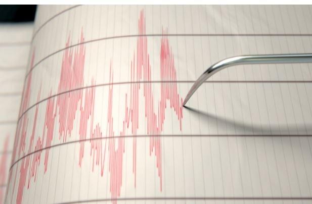 Земетресениев района на Вранча. Това сочи справка на сайта на
