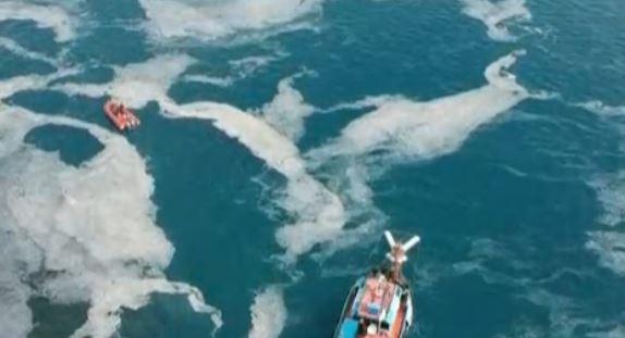 В Мраморно море започна мащабна операция за почистване на водите