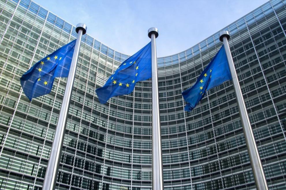 """""""Страните членки, които все още не са представили пред Европейската"""