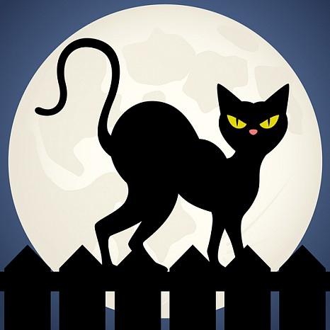 Черна котка на пътя ни, счупено огледало, петък 13-и. И