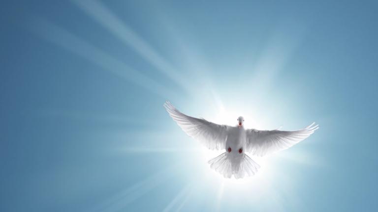 Българската православна църква почита днес църковния празник Свети Дух. Той