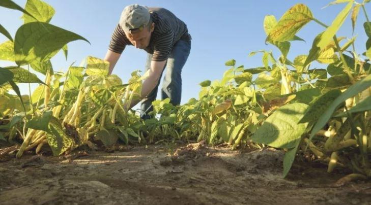 50 хиляди земеделци ще получат 70 милиона лева помощи от