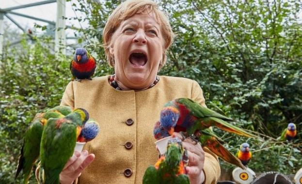 """Действащият германски канцлер Ангела Меркел беше неочаквано """"нападната"""" от агресивен"""